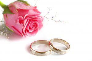Roos met ringen