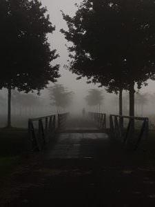 Doorkijkje in museumpark Oranjewoud